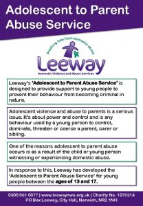 thumbnail of Adolescent Parent Abuse Flyer