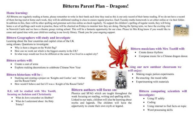 thumbnail of Bitterns Spring 2019 Parent plan